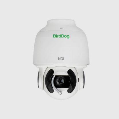 BirdDog Eyes A200 IP67 NDI PTZ kamera